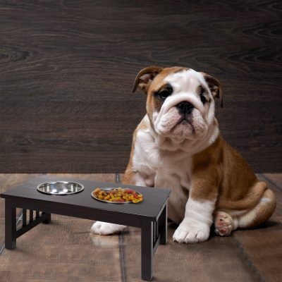 Chappy Pet Feeder Life Style